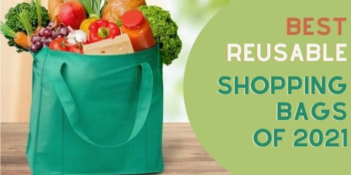 Absolutely Best Reusable Shopping Bags of 2021