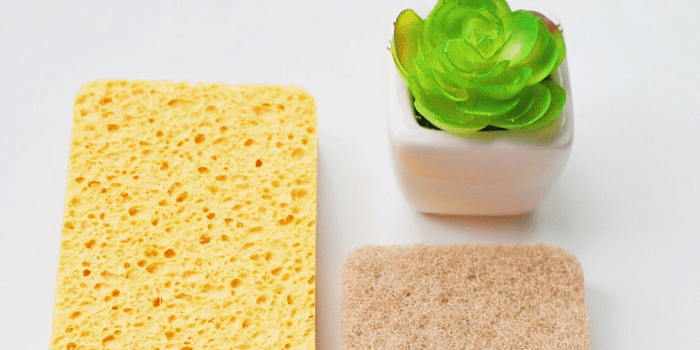Biodegradable Cleaning Sponge