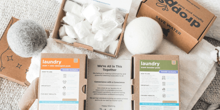 The Best Eco Friendly Plastic Free and Vegan Laundry Detergents