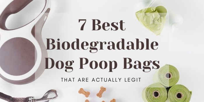7 Best Biodegradable Dog Poop Bags That Are Actually Legit
