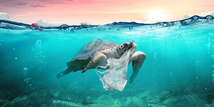 How Much Trash Is In The Ocean?