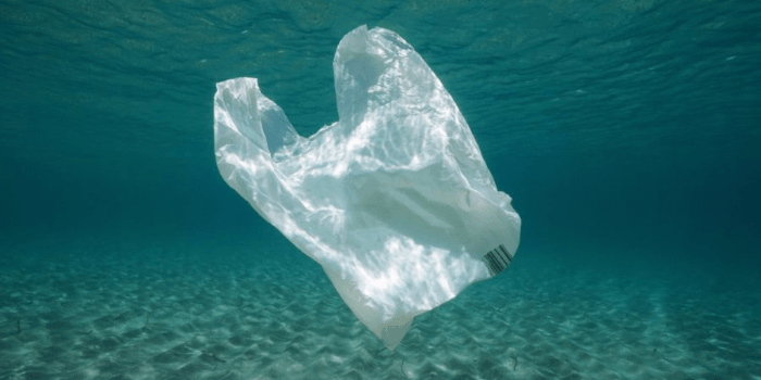 How Long Does Plastic Last In The Ocean?