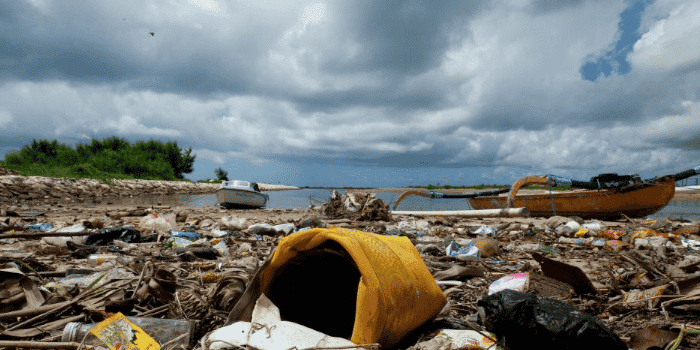So How Does Trash End Up In The Ocean?