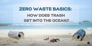 Zero Waste Basics: How Does Trash Get Into The Ocean?