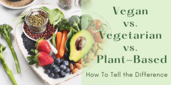 Vegan vs. Vegetarian vs. Plant-Based: How To Tell the Difference